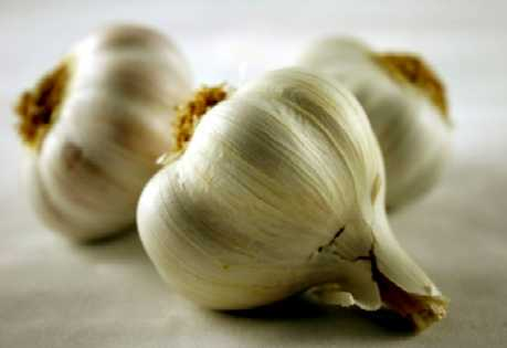 Garlic  A natural remedy, garlic contains allicin which helps kill bacteria and fight germs.  Procedure: Suck on a clove of garlic and ingest it juices. Garlic leaves an offensive odor so try doing this once a day before going to bed.